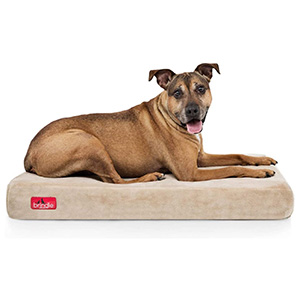 Brindle Memory Foam Orthopedic Bed