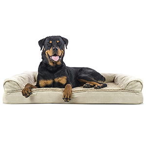 Furhaven Orthopedic Sofa-Style Bed